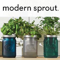 Modern Sprout from Gemline flyer